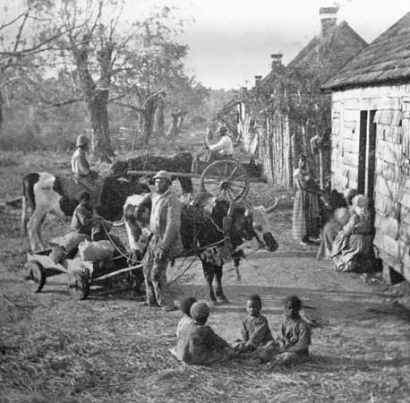 slave life in the south The war increased the importance of slaves with industrial skills in the upper  south's hiring market.