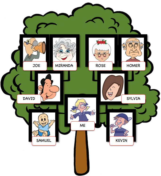 English Exercises: My Family Tree