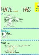 English exercises: Auxiliary Verbs