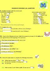 possessive pronouns exercises
