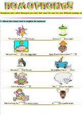 English exercises: Homonyms